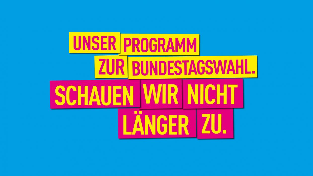 Programm zur Bundestagswahl 2017